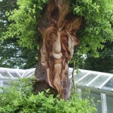 Greenmen Photo 3 - East Dene Green Man