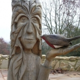 Greenmen Photo 11 - Robin Goodfellow